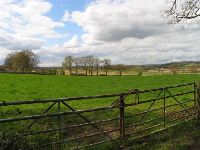 Hillfoot Farm in the Bucklebury/Stanford Dingley Area