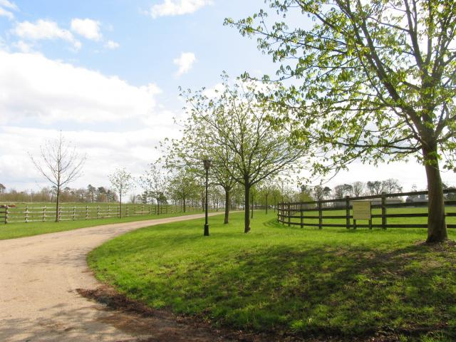 Trindledown Farm