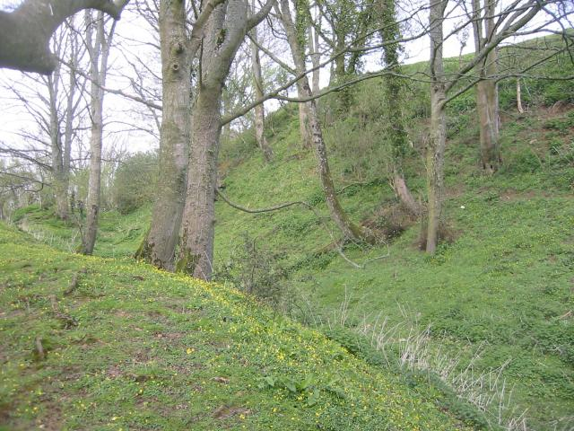 Cadbury Castle defences