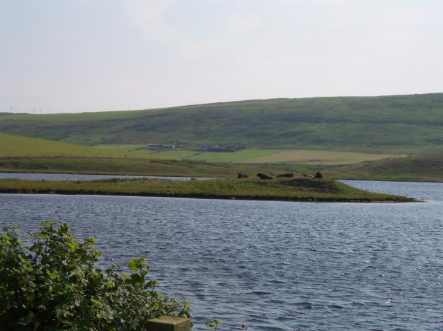 Law Ting Holm in Tingwall Loch