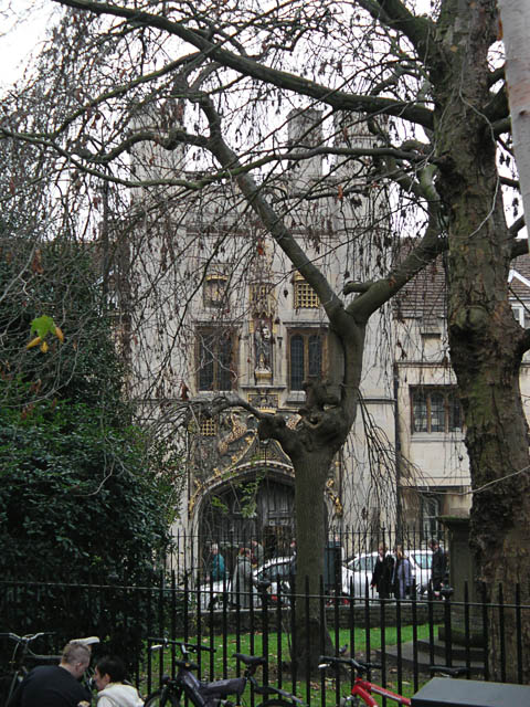 Gate of Christ's College seen across Great St Andrew's churchyard