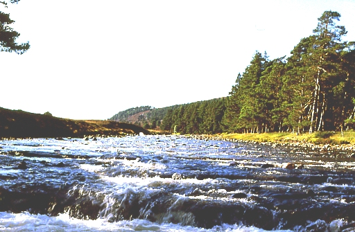 River Dee above the Linn of Dee