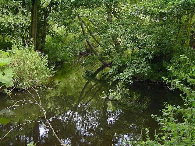Pool near Wayford Bridge