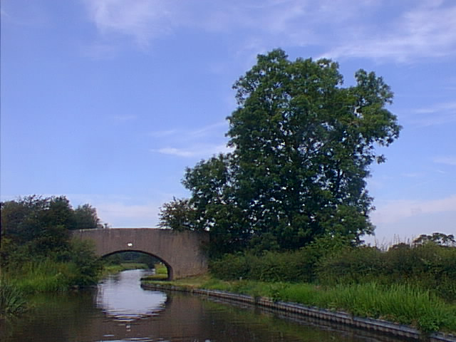 Cheadles Bridge, No 81, Coventry Canal