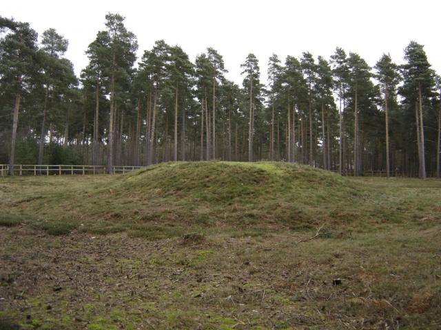 Mortimer Common Barrows