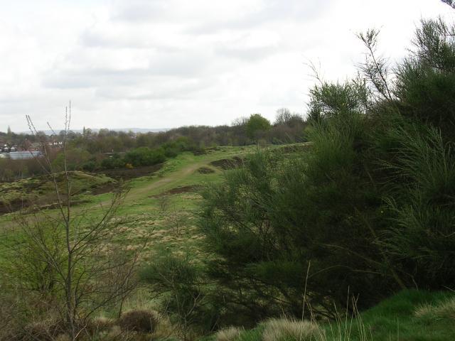 Kersal Moor, Local Nature Reserve, Salford
