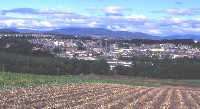 Tattie Field Near Brechin