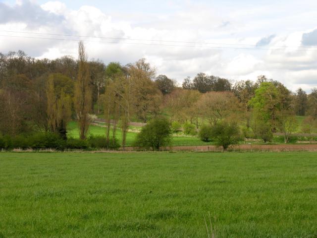 Common Hill Road