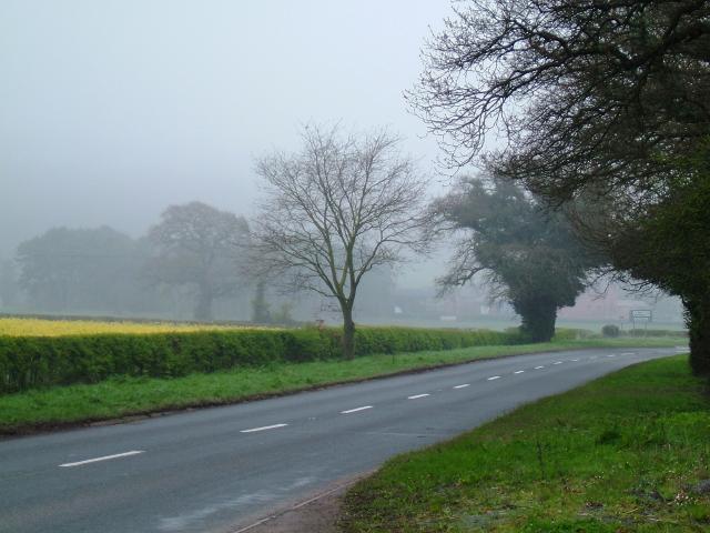 Towards Hopton Farm