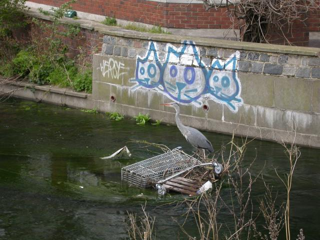Hogsmill River at Kingston Upon Thames