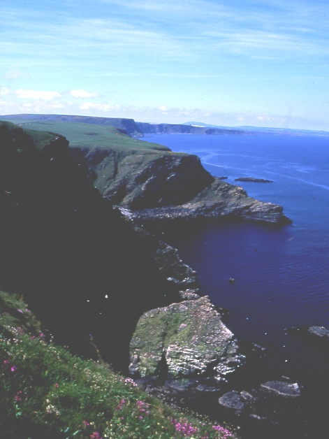 Looking west from Troup Head