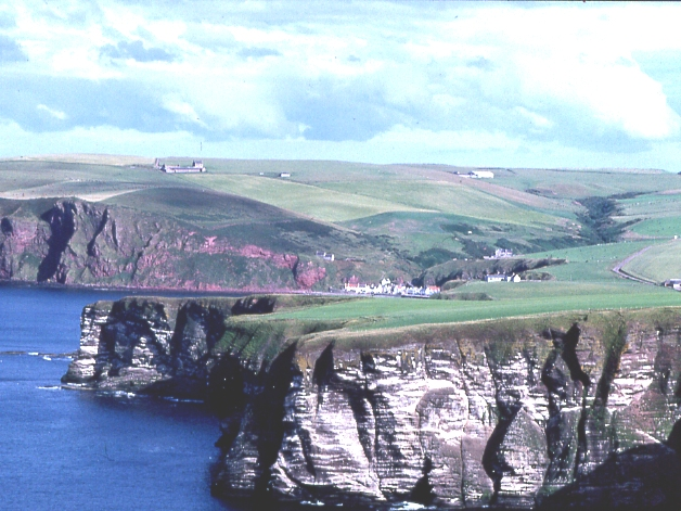 Cliffs at Downie Bay from Troup Head