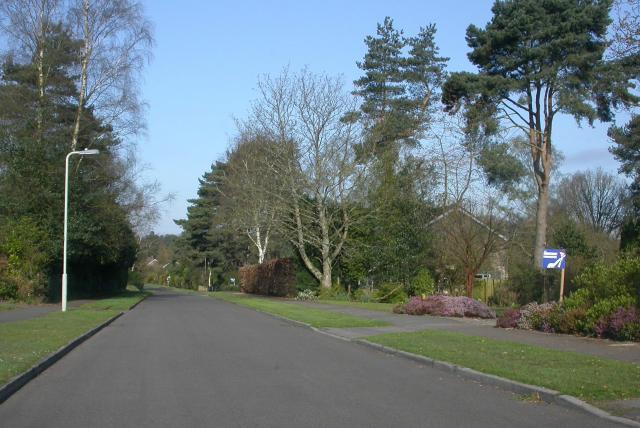 Kingswood Firs, Grayshott