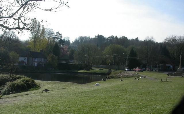Shottermill Ponds, Camelsdale