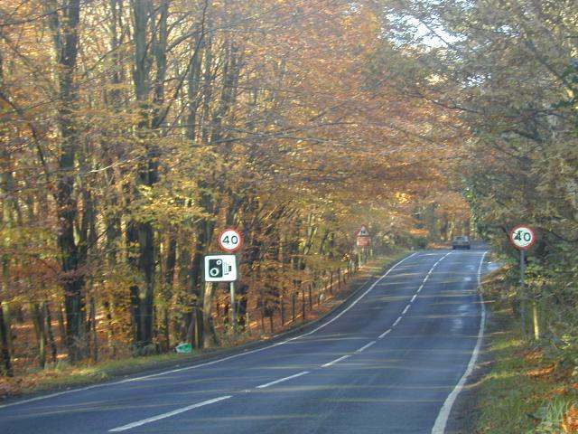 Crooksbury Hill