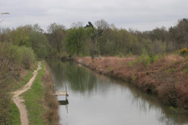 Basingstoke Canal at Eelmoor Bridge