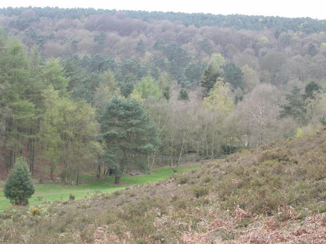 Whitmoor Vale