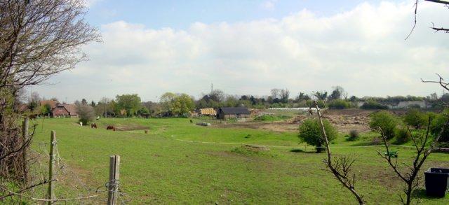 Chestnut Street Farm