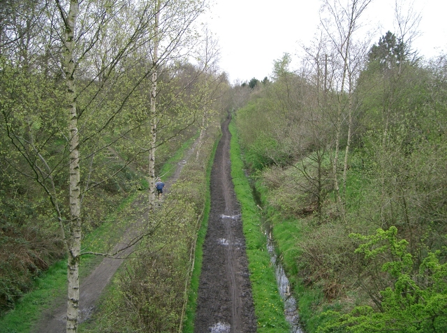 MiddleWood Way as Seen from the Ladybrook Valley Interest Trail