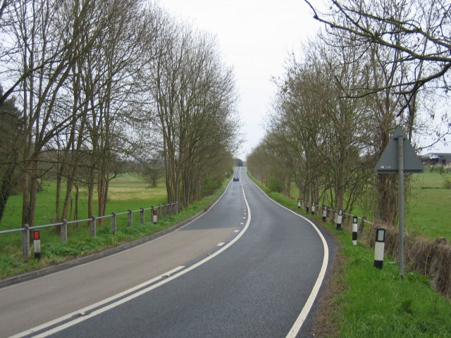 Marsh Common