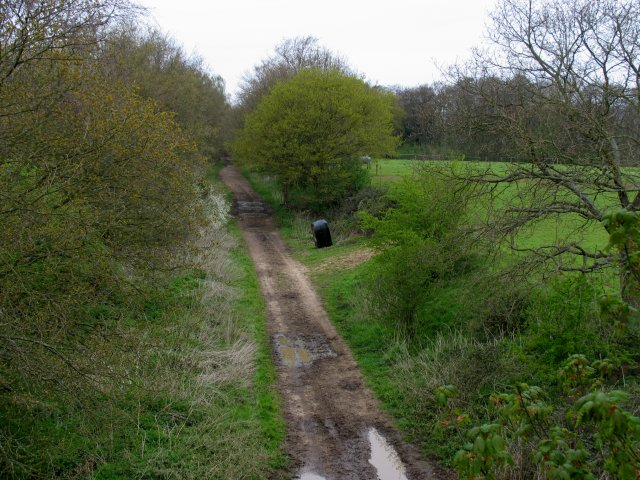Dismantled Railway: nr Shopham Bridge