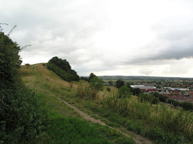 Wearyall Hill and the Holy Thorn