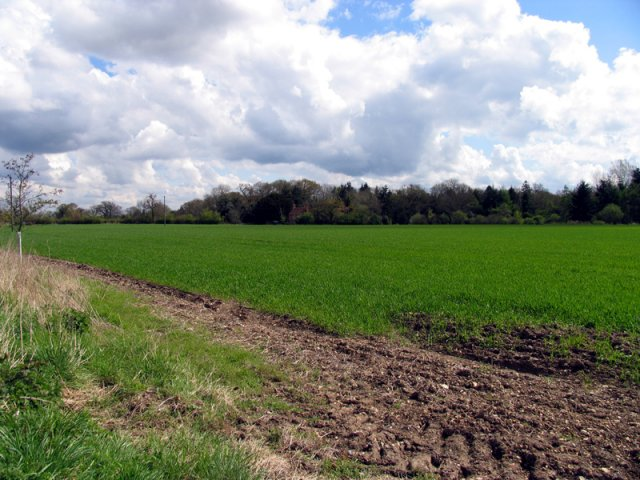 Farmland opposite Boot Farm
