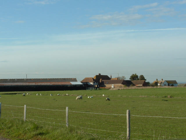 lydd romney marsh adult contacts