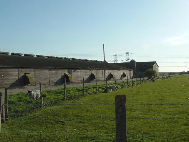 Brickwall Farm outbuildings, near Lydd, Romney Marsh, Kent