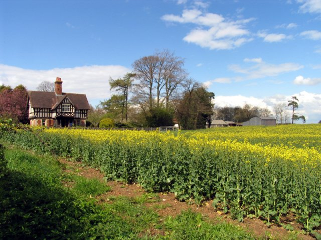 Coldridges Farm