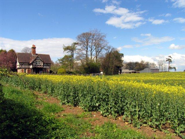 Coldridges Farm