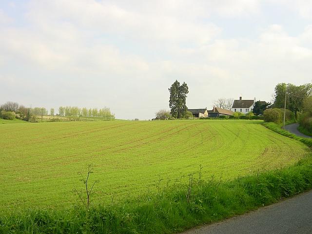 Pinks Farm