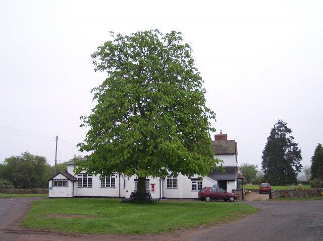 Berrow Village Hall and Village Green