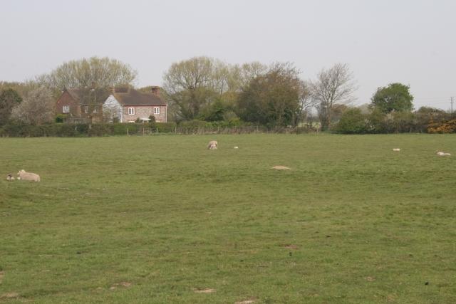 Sidlesham Common