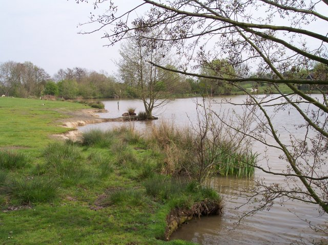 The Mill Pond, Hollybed Common