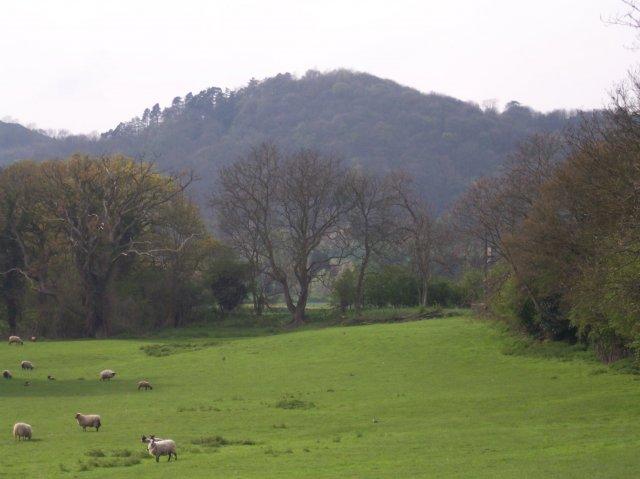 Little Malvern Mill site