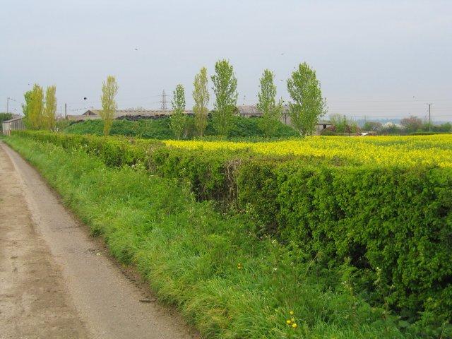 Brock Farm