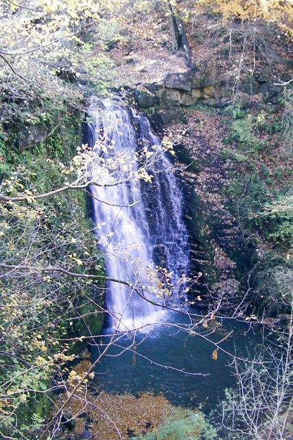 Sneaton Forest - Falling Foss water fall