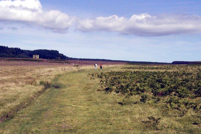 Levisham Moor