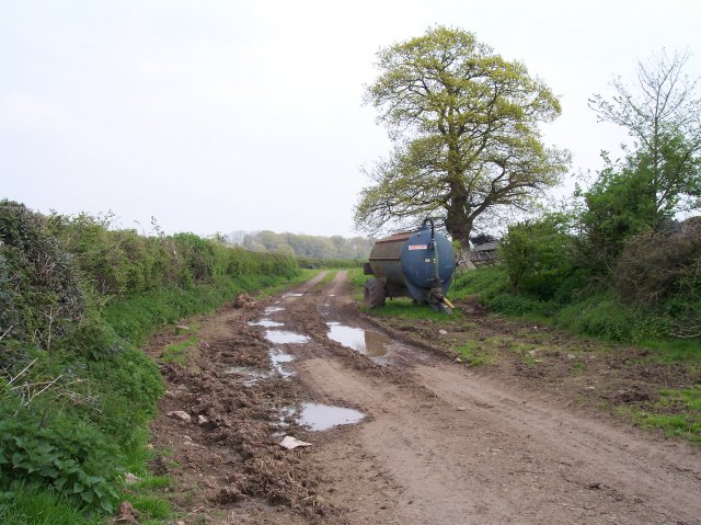 The Old Road near Broadacres Farm