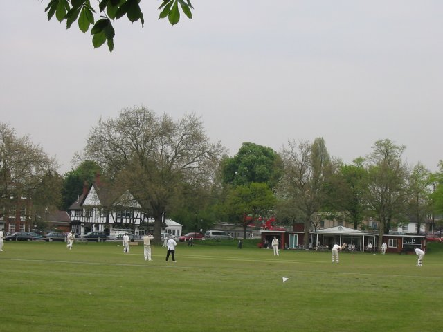 Cricket on Kew Green
