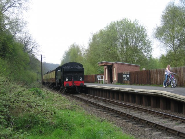 Country Park Halt