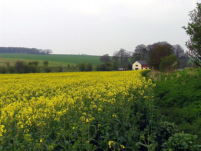 Lands End nr West Ilsley