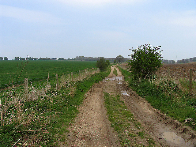Riding Route that crosses East Ilsley Down