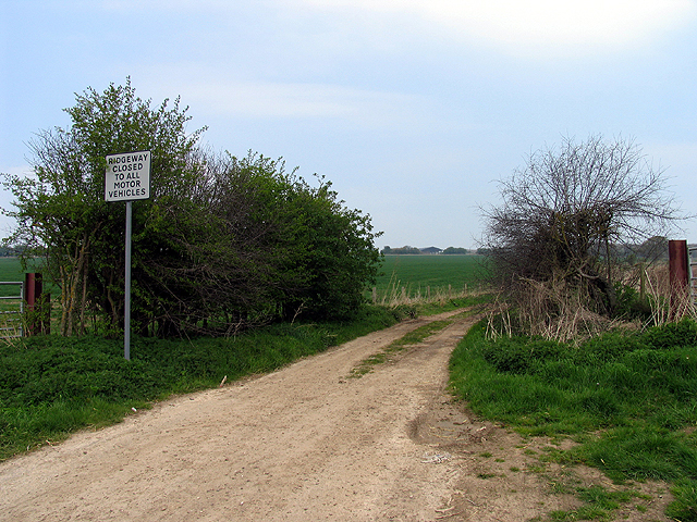 Ilsley Downs Riding Route: East Ilsely Down