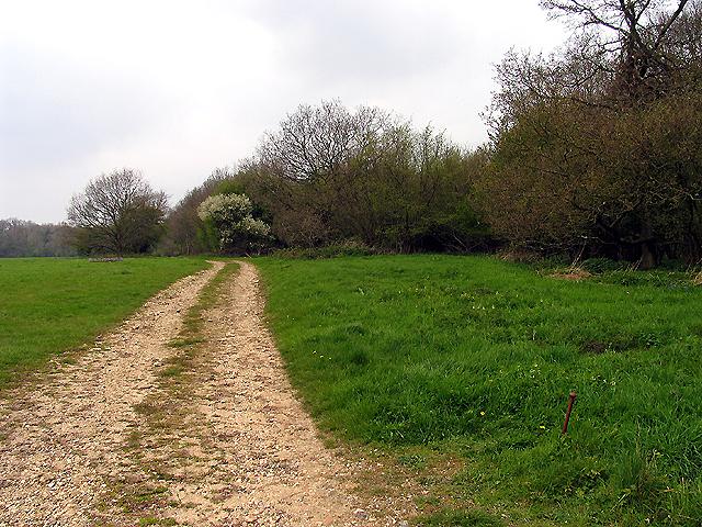 Footpath at Parkwood