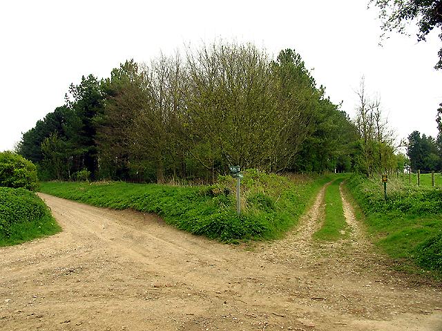 Near Catmore Farm