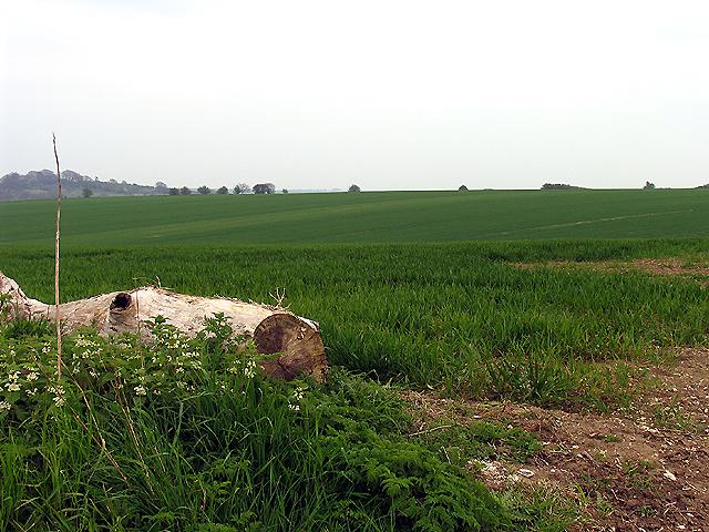 Farmland near Lands End and West Ilsley