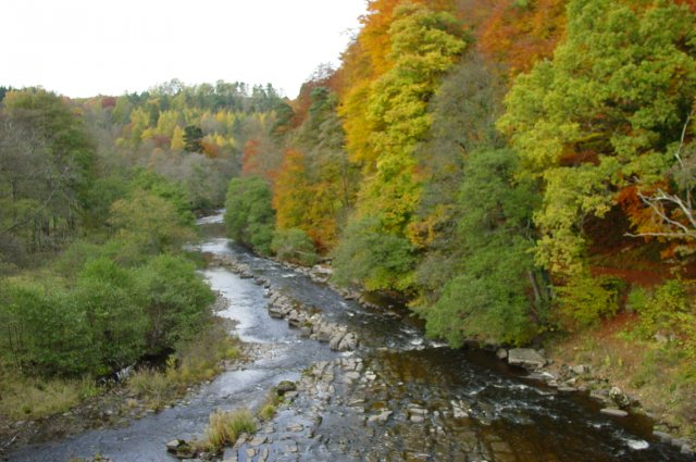 River Allen, taken from the Cupola Bridge at Whitfield