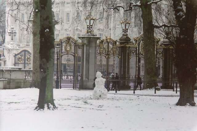 View of Buckingham Palace from Green Park in Winter